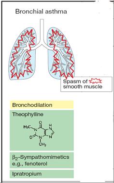 kortikosteroid inhalasi